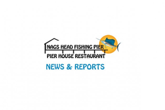 Nags Head Pier Report